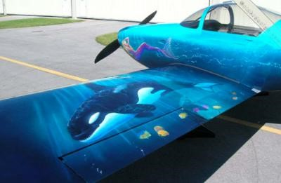 Seascape Aircraft Painting - Norfolk Aviation - Piston Aircraft - John Stahr - Aircraft Painting